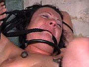 The Pain Files - Extreme BDSM